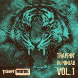DJ TIGERTRONIK | Trappin' In Punjab Vol. 1 | 2018 Podcast
