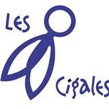 Fête des Associations 2017 - l'association Les Cigale au micro de Radio MNE