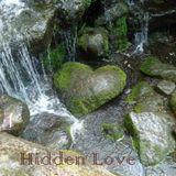 Chucky T's In Love (Vol 20): Hidden Love