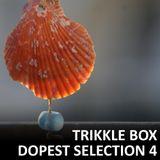 Trikkle Box - Dopest Selection 4