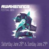 Egbert - Live @ Awakenings Festival Spaarnwoude (Netherlands) 2014.06.28.