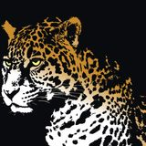 D Jaguar_ Trees_Enero Promo Mix 2012