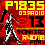 PIBES DE RADIO #13 PUNK SKIN RADIO PODCAST