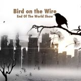 Bird on the Wire - End Of The World Show