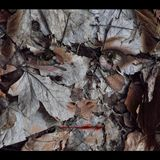 Piko - October Bass / Deep Dubstep & Bass music mix