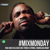 DJ Spinna Edition - Tribe Records #MIXMONDAY v3.0