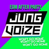 JUNGVOIZE - EDM MASHUP AFTER PARTY  EP.2