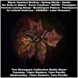 THE SHOEGAZE COLLECTIVE RADIO SHOW ON DKFM - SHOW 68 - 5/8/18
