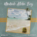 MAHALO ATCHA BOY VOL. 4.5