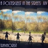 A Poltergeist in the Streets XIV