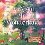 A Night In Wonderland 2014