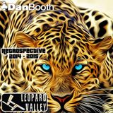 Leopard Valley Retrospective 2014 - 2015