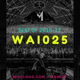 WE ARE IKAMIZE Episode 025 Best of 2016 - 17