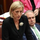 More MPs fall in citizenship saga continued