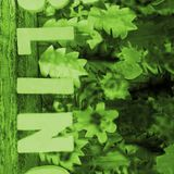 Midsummer Bling 2015 Opening mix