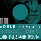 Adele Skyfall - Consoul Trainin  - Johniesad remix