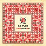 C.j. Plus - Ukrainian Funk. Vol 4 (Rare Vinyl Only)