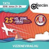 2018.06.22. - 25. Víz, Zene, Virág Fesztivál, Tata - Friday