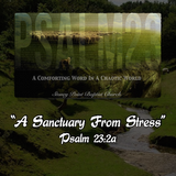 """PSALM 23 SERIES- """"A Sanctuary From Stress"""" Psalm 23:2a"""