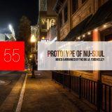 Prototype of Nu-Soul 55