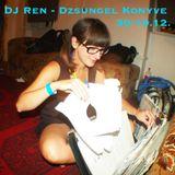 DJ Ren - Live at Dzsungel Konyve (Tilos Radio) 30.10.2012.