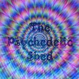 The psychedelic Shed Radio Show 9