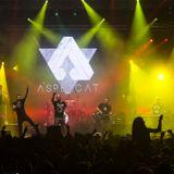 ASPENZOO - Mix Especial St Joan - Valls 2015