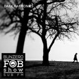 SUB FM - BunZ & Dark Harmonics - 26 06 14