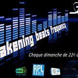Awakening beats frequency EP 11 Rpl radio