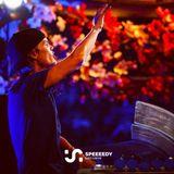 Avicii - Live @ Mainstage, Tomorrowland, Belgium 2013