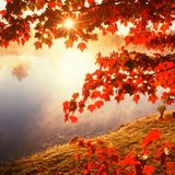Harm Rhebergen - Autumn Blues