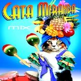 Funky Cat Mix...Boogie On Top