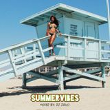 SUMMERVIBES mixed by: DJ JAVS