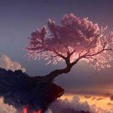 Eastern Roots, Western Blooms