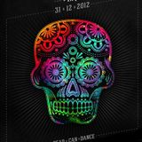 INQ - Dead Can Dance 2012 promo