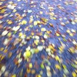 Autumn in Konstanz
