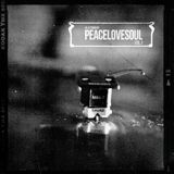 Peace Love & Soul Vol.1