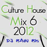 DJ RAW RK_Culture House Mix 6 2012
