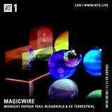 Magicwire w/ Gabriola & Ex-Terrestrial - 3rd November 2017