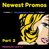 Newest Promos & other selected House Tunes #2