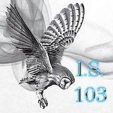 Infinite Structure 103
