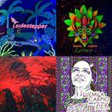 Movimientos show: 25/3/15 w/ new Sidestepper, Bomba Estereo, Luzmila Carpio, Os Nelsons, Skip & Die
