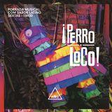 PERRO LOCO #05