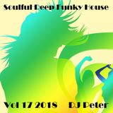 Soulful Deep Funky House Vol 17 2018 - DJ Peter