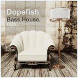 Dopefish aka DJ System-D - Bass n House Mix SEPT2013