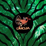"""""""Selva Mágica"""" a tropical Mix for Vice (Mixed by Umoja)"""