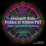 Spoondrift Radio 02.22.13 (pantiestheclown)