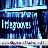 Crate digging # 2 Ladies Nite -  mixed by littlegrooves