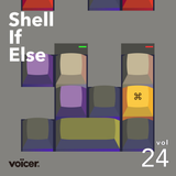 Voicer Mixtape 24|shell if else