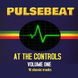 Pulsebeat At The Controls Volume One